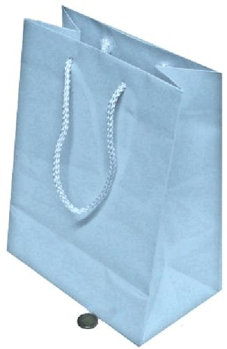 Paper Carry Bags