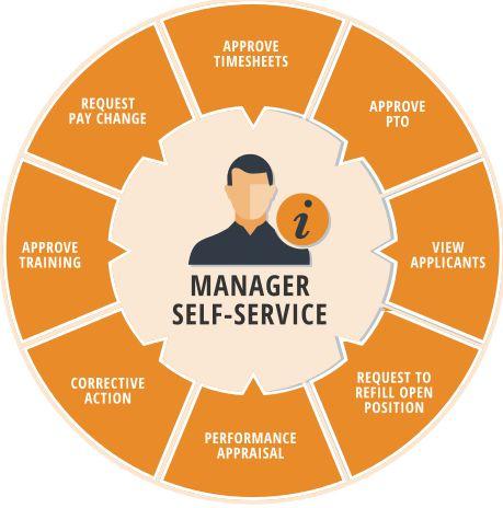 Web Based Attendance Management Software