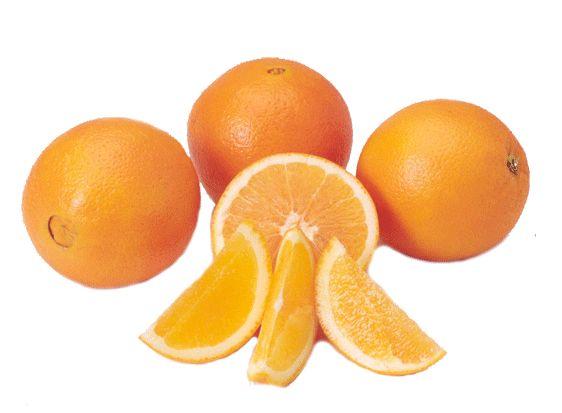 Navel Orange 03