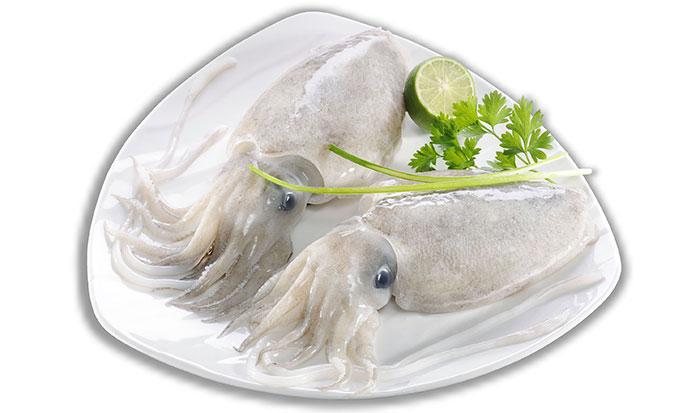 Frozen Whole Cuttlefish