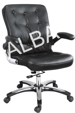 009 Low Back Revolving Chair
