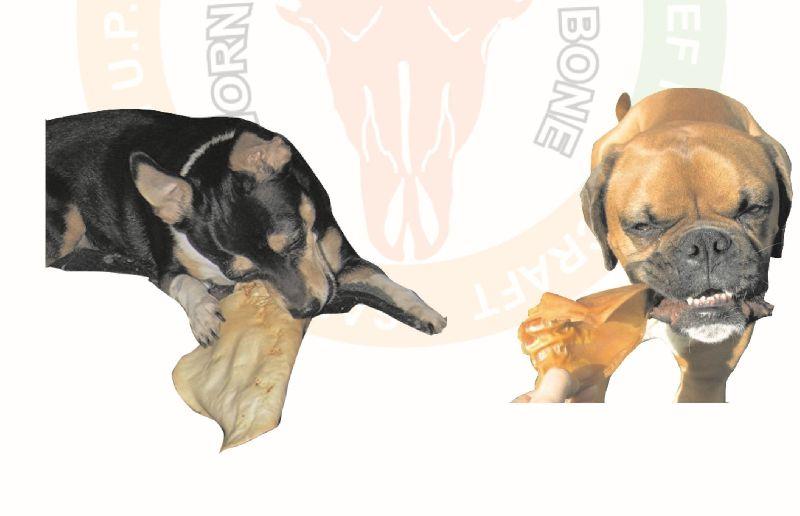 Dog Chew Ears & Tail 06