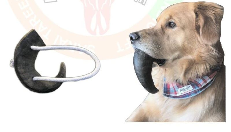 Dog Chew Rope Toy 04
