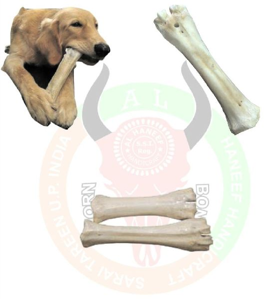 Femur Bone Dog Chew 03