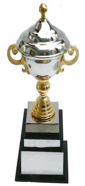Aluminium Award (CI-1065)