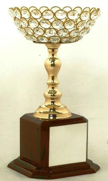 Diamond Cup Trophies Diamond Cup Trophy Manufacturers