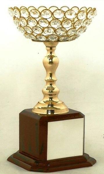 Diamond Cup Trophy (CI-1134)
