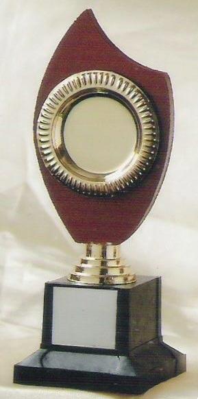 Wooden Trophy (S-322)