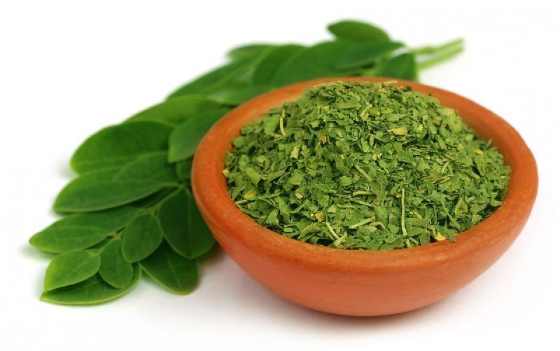 Fresh Moringa Leaf 01