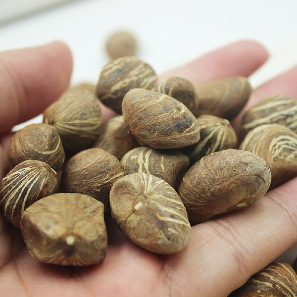 Malabar Nuts