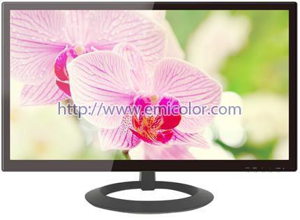 EM195XG0 19.5 inch LED Monitor