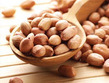 Peanut Kernels 01