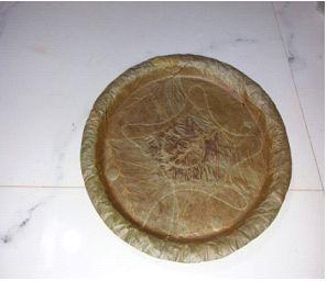 Sal Leaf Plates