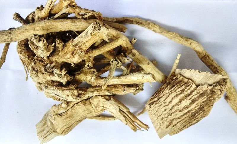 Jivanti Dry Roots