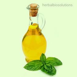 Ocimum Sanctum Oil