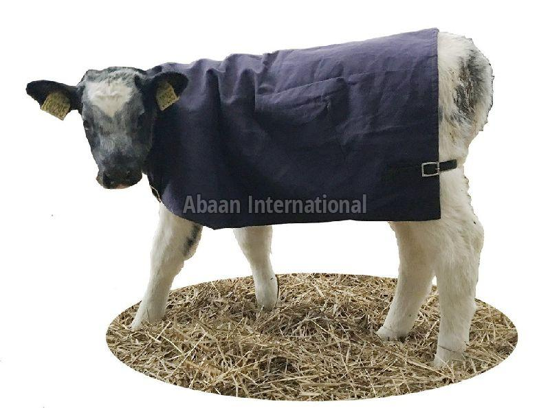 Calf Canvas Blankets