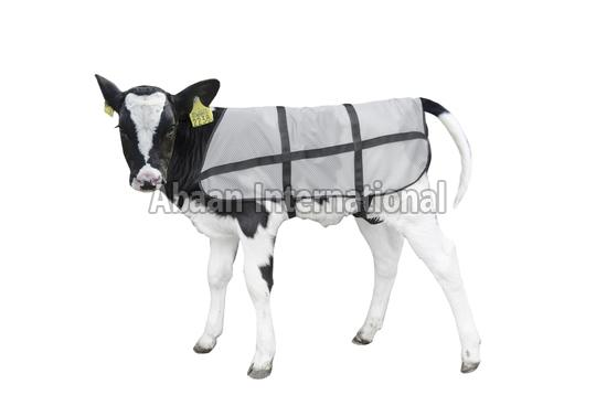 Calf Fleece  Blankets
