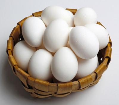 White Chicken Egg 02
