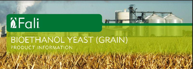 Fali Bioethanol Yeast