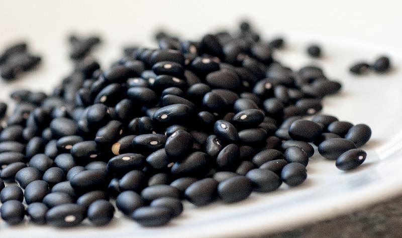 Black Navy Beans