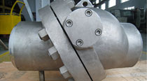 Inconel Check Valves