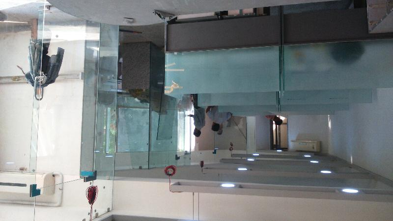 Toughened Door Glass 05