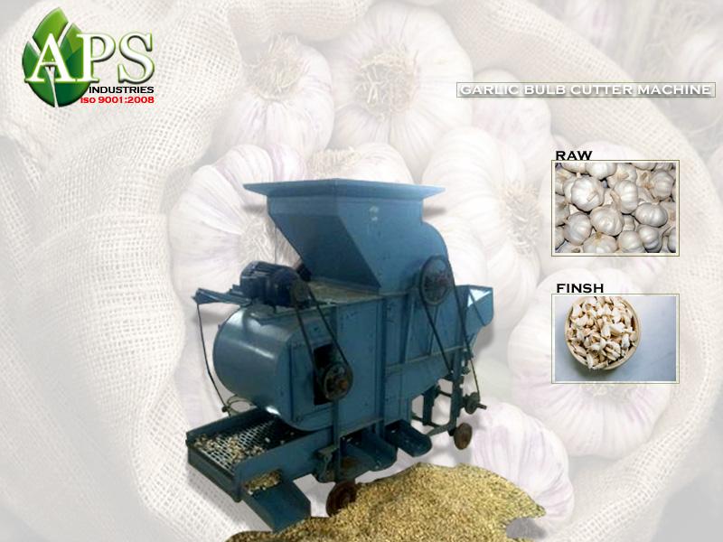 Garlic Bulb Decoder