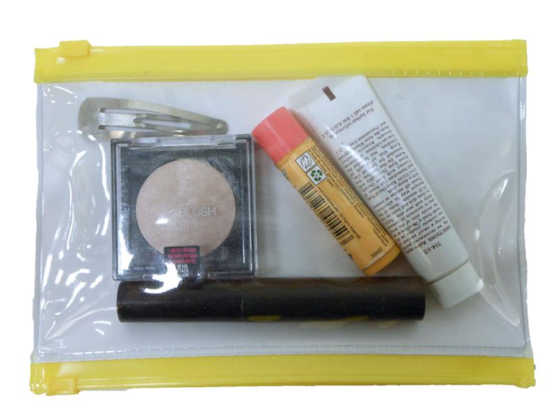 Transparent Cosmetic Bags