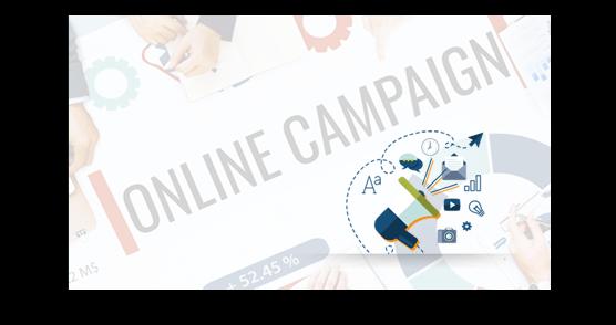 Online Campaign Development