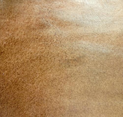 Double Tone Buffalo Leather