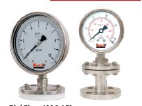 Flanged End Diaphragm Sealed Pressure Gauges