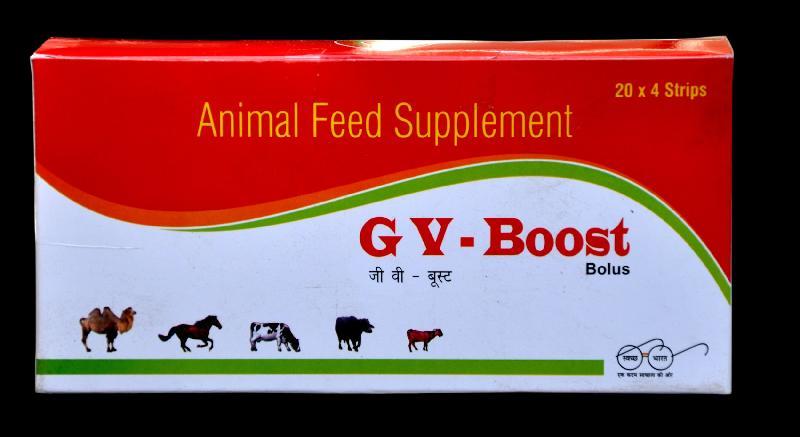GV-Boost Bolus