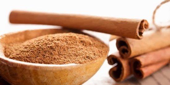 Cinnamon Powder 01