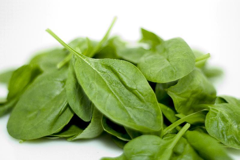 Fresh Spinach 02