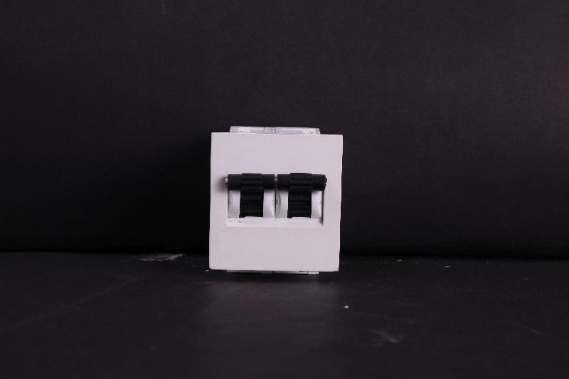 Mini Double Pole MCB 02