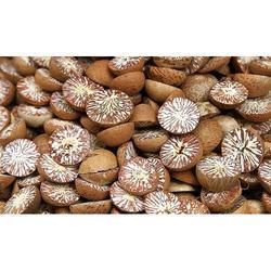 Betel Nut 01