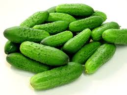Fresh Cucumber 01