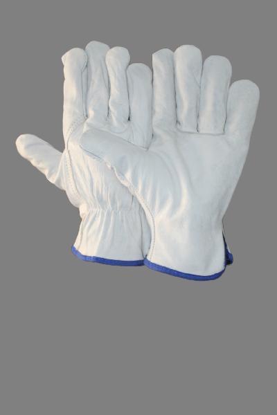 EW-DC71 Driving Gloves