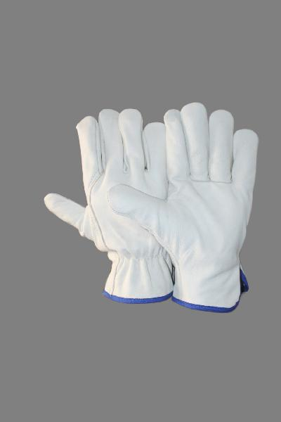 EW-DC72 Driving Gloves
