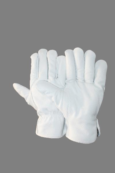 EW-DN72 Nappa Leather Gloves