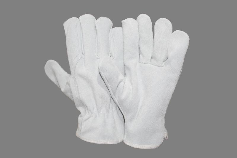 EW-DS71 Driving Gloves