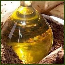 Synthetic Sandalwood Oil