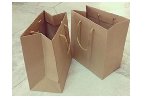 Paper Bag with Rope Handles