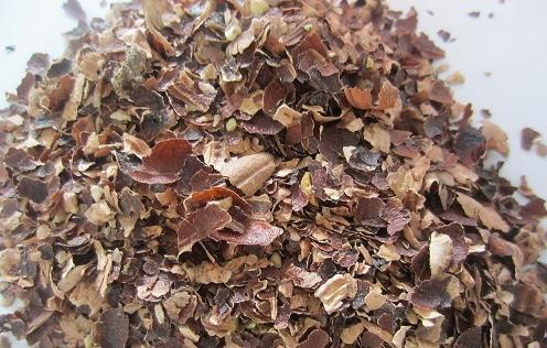 Cashew Nut Husk 02