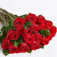 Dutch Rose B Grade