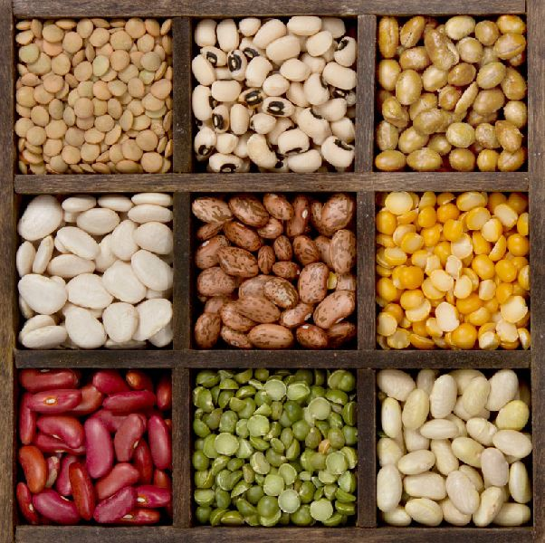 Dried Agro Beans