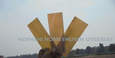 Ox Horn Milk White Plates