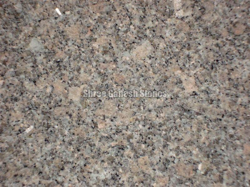 GD Brown Granite Slabs 02