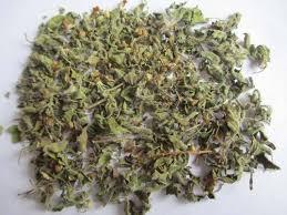 Centella Asitica (Gutu Kola Leaves)