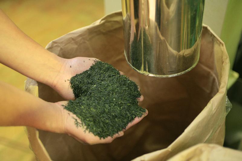 Theanine Green Tea